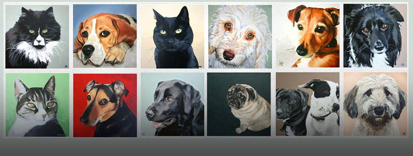 Cats and Dogs by Kylee Beencke - Portraits From Photos